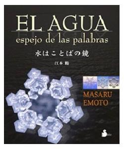 EL AGUJA ESPEJO DE LAS PALABRAS