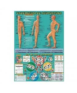 VADEMECUM DE ACUPUNTURA + LEY DE LOS 5 ELEMENTOS
