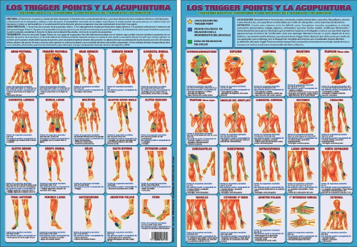 LOS TRIGGER POINTS Y LA ACUPUNTURA